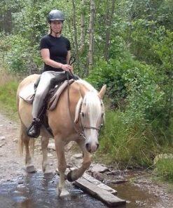 take a break trail ride